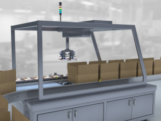 Case Packer Solutions for Food Packaging